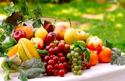 Nutrition – The Basics