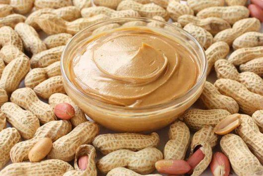 Nut Protein