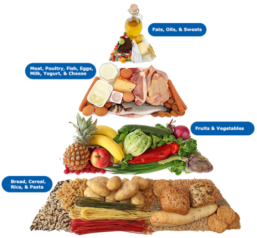 http://www.top.me/wp-content/uploads/2013/05/food-pyramid.png