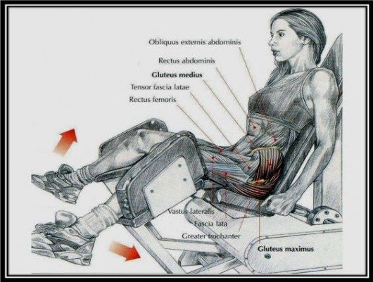 Seated Machine Hip Abduction