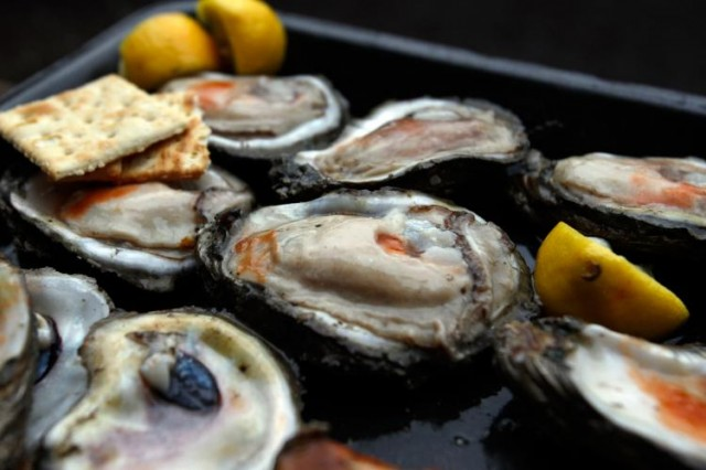 Oysters-sourse-of-zink