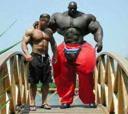 Gym Buddy