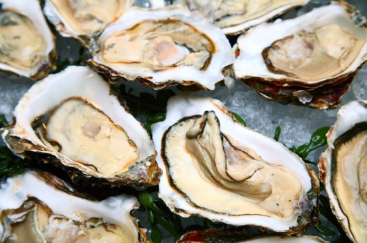 Oysters For Hair Grows