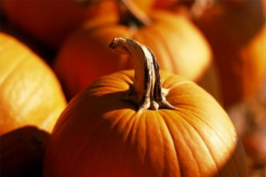 7 Tasty, Healthy Pumpkin Recipes