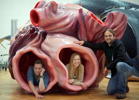 Blue Whale Heart