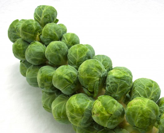 Brussels Sprouts