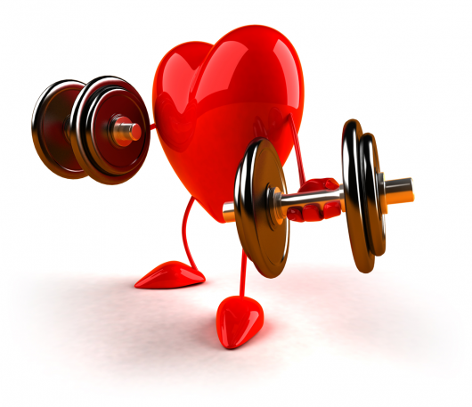Heart is Super Muscle