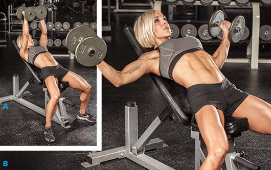 Chest Flyes for Women