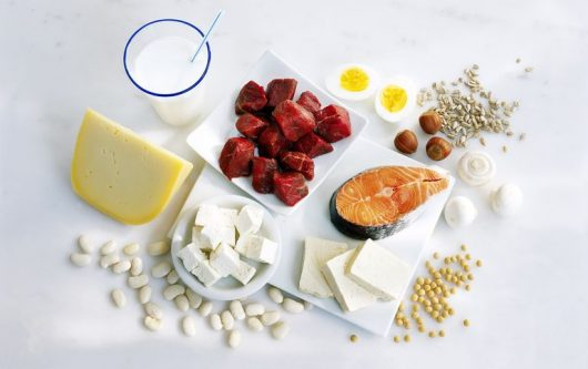 Why You Should Include More Protein in Your Diet