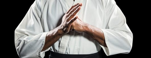 Healthy Habits of a Martial Arts Master