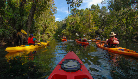 The 7 Health Benefits of Kayaking