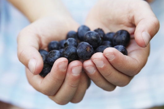 a kid with a handful of blueberries