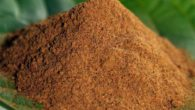 The Kratom red dragon powder on the leaf