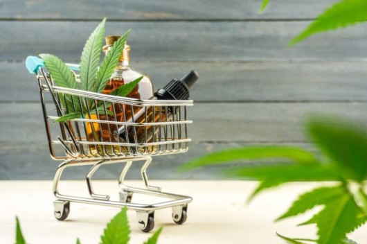 The 4 Errors You Must Avoid When Purchasing CBD Products