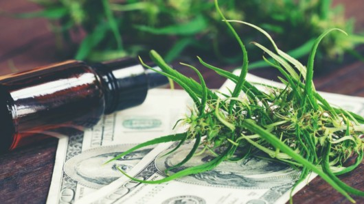 Cbd oil, money banknotes and cannabis are lying on the wooden table