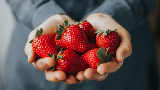 A close up strawberries in man't hands