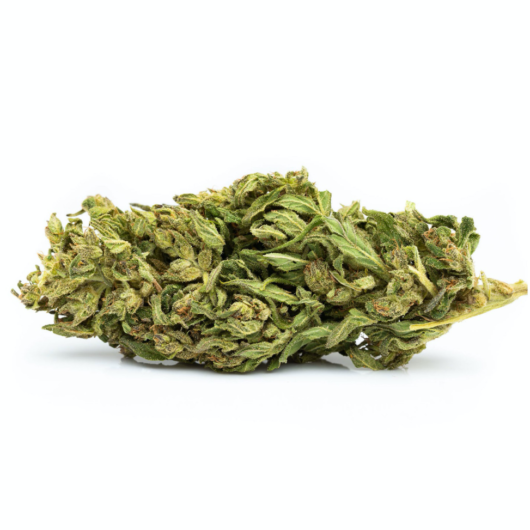 A close up picture of CBD Hemp Flower isolated on white