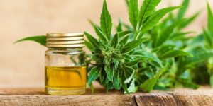 The Top 10 Benefits of CBD