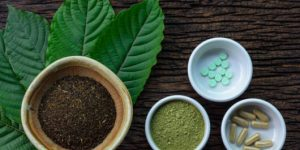 6 Facts You Never Knew About Kratom