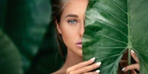 How Plant Stem Cells Can Be Useful